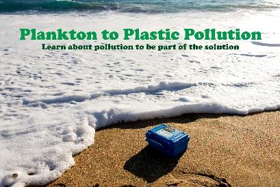 Plastic Kit on the Beach